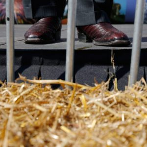 2016 Iowa Caucus - GOP presidential candidate Mike Huckabee's shoes are shown as he speaks on the Des Moines Register Soapbox at the 2015 Iowa State Fair in Des Moines on Thursday, Aug. 13, 2015.